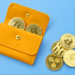 仮想通貨取引所を利用する手数料はどれくらい?